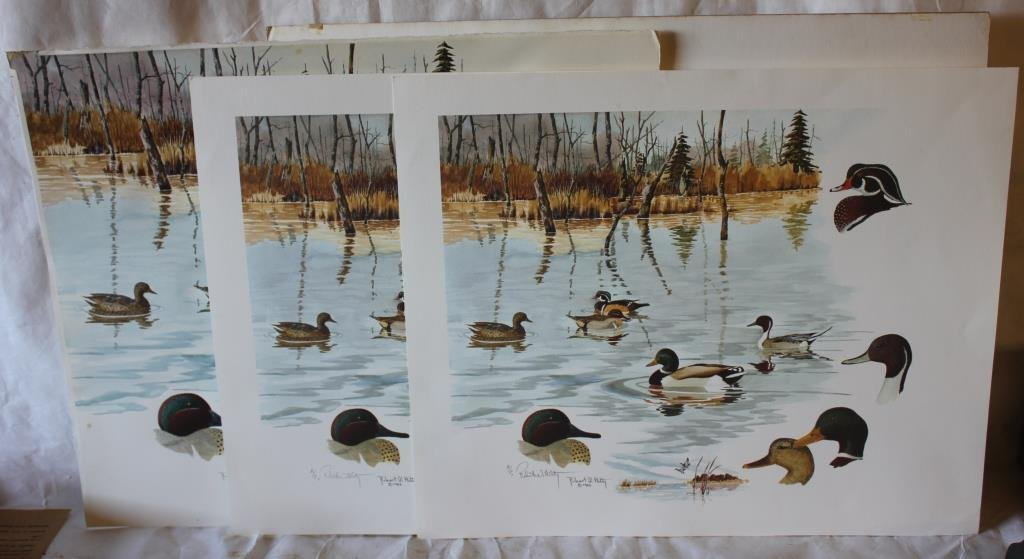 COLLECTION OF 6 MISC. DUCK PRINTS