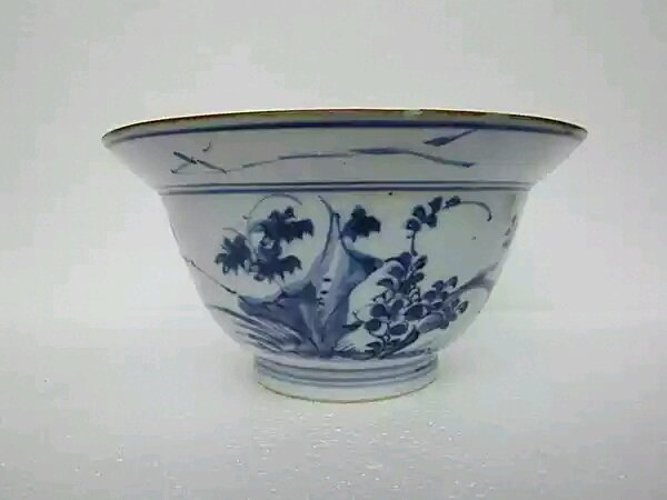 A Ching Blue and White Bowl