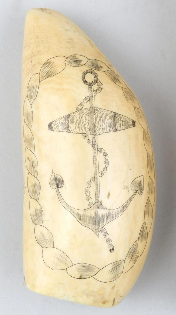 19th century scrimshaw whale's tooth