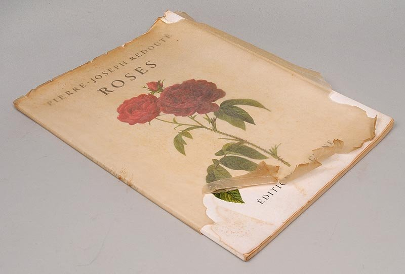 'Roses,'' Pierre-Joseph Redoute.