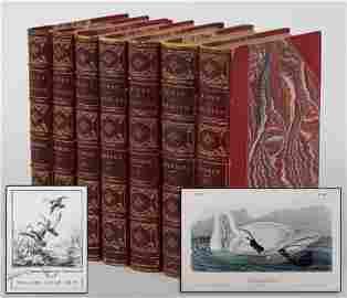 JOHN JAMES AUDUBON (American, 1785-1851), ''The Birds
