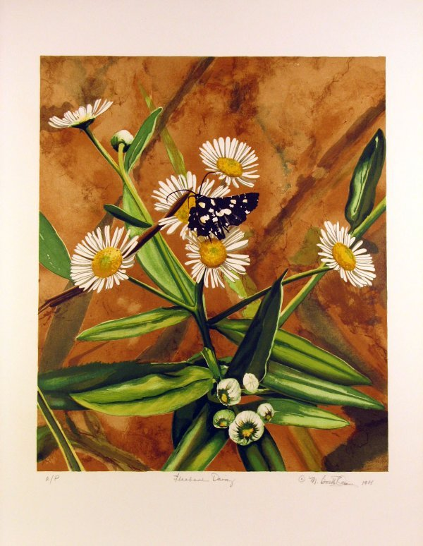 5007: Butterfly on Daisy by Mary Booth Owens