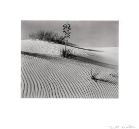 Brett Weston: White Sands, New Mexico, 1946