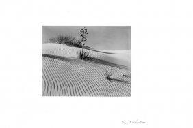 Brett Weston, White Sands, New Mexico, 1946