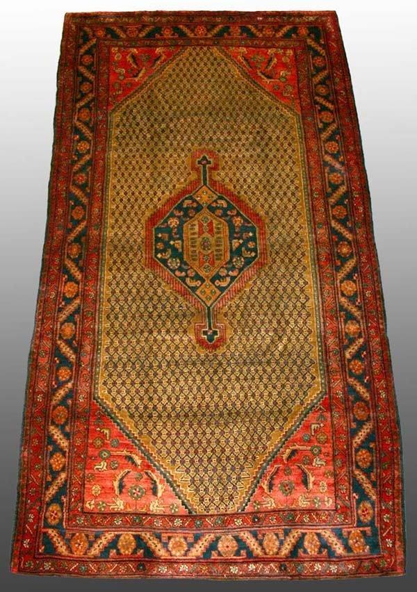 509: Persian Rug 5'2 x 9'9