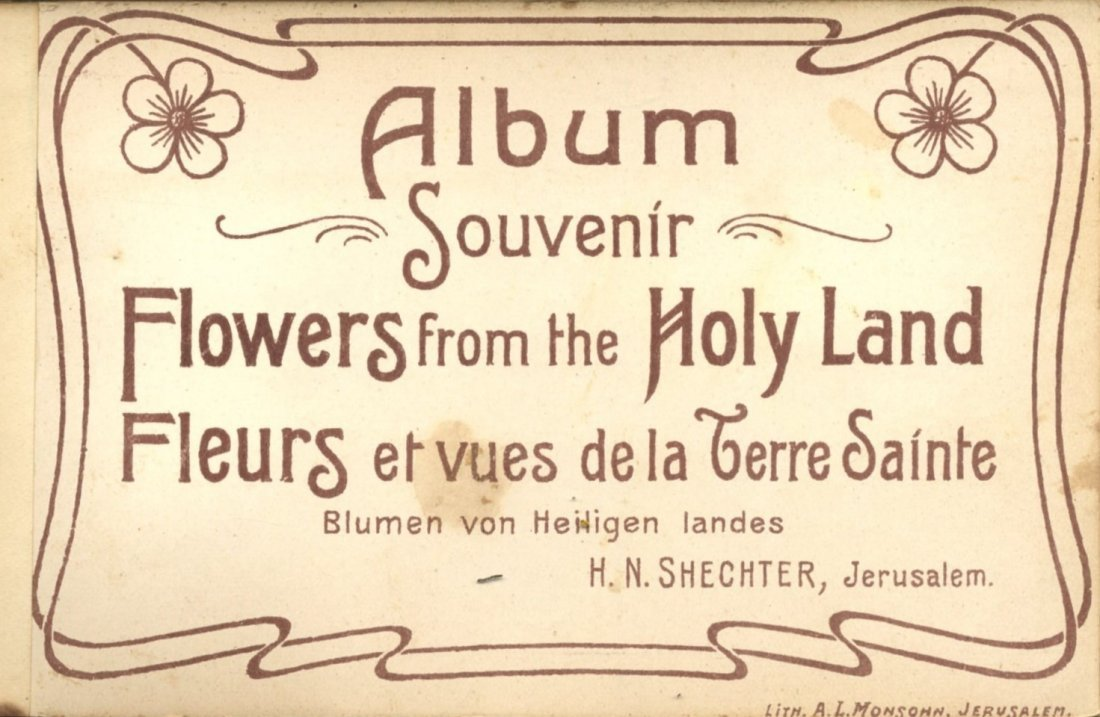 Albums of colored postcards and flowers from the Holy