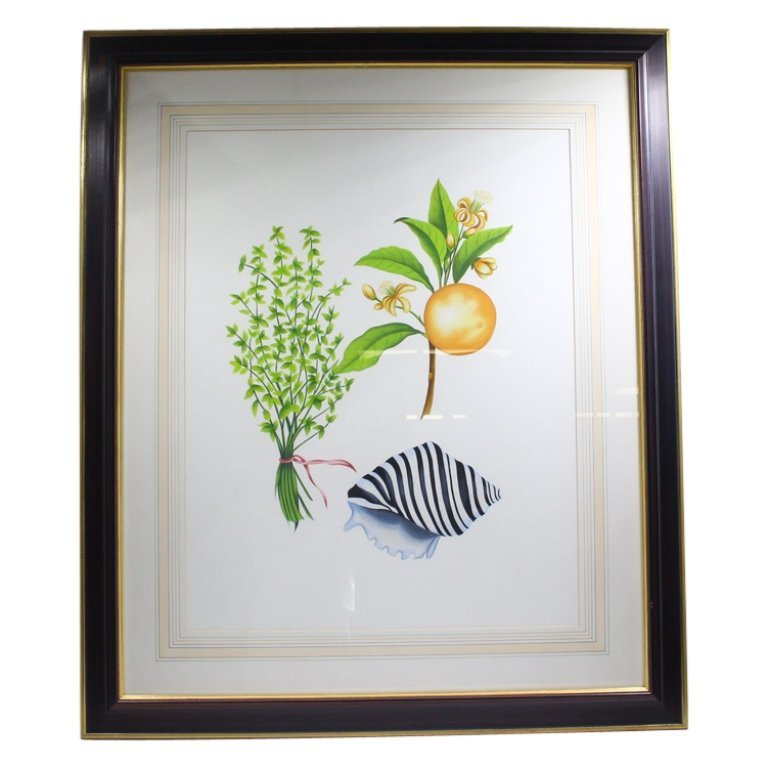 Floral, Fruit, and Shell Decorative Art Print