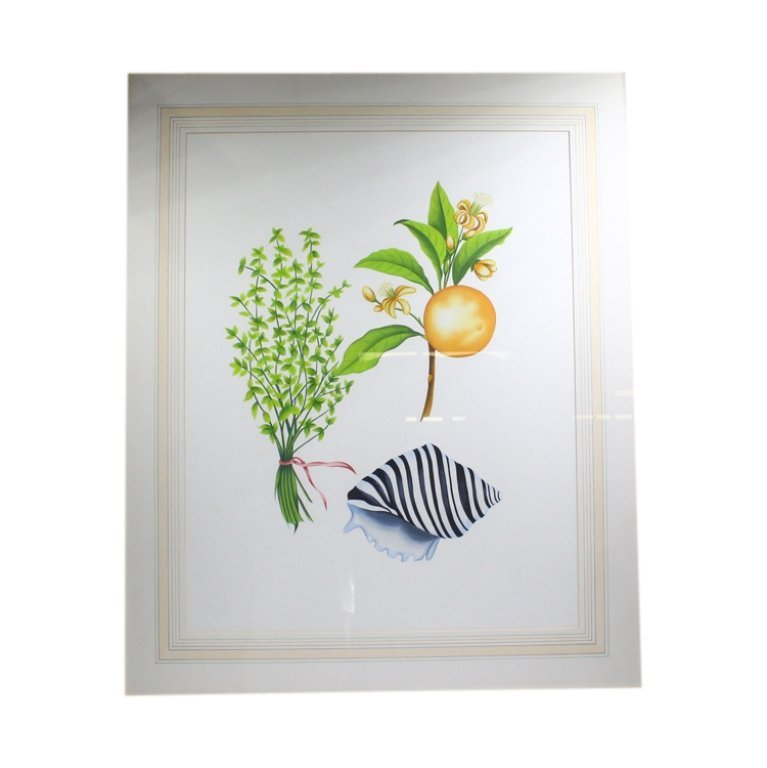 Floral, Fruit, and Shell Decorative Art Print - 3