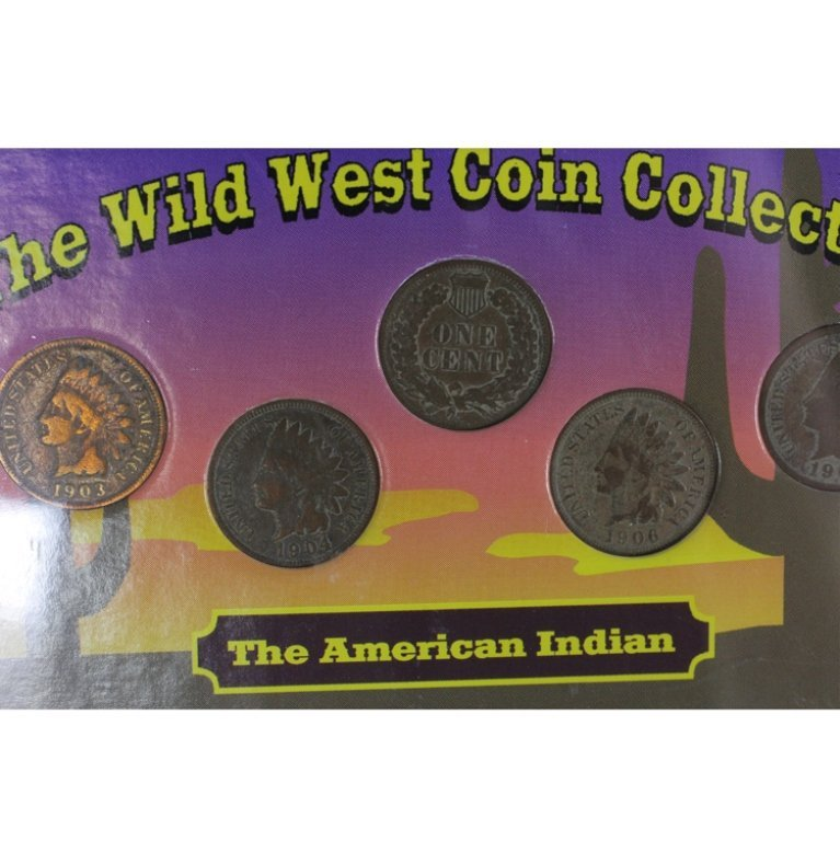 Wild West Coin Collection Buffalo & Indian Head - 2
