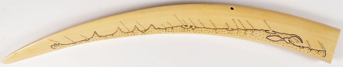 A SCRIMSHAW WALRUS TUSK CRIBBAGE BOARD - 2