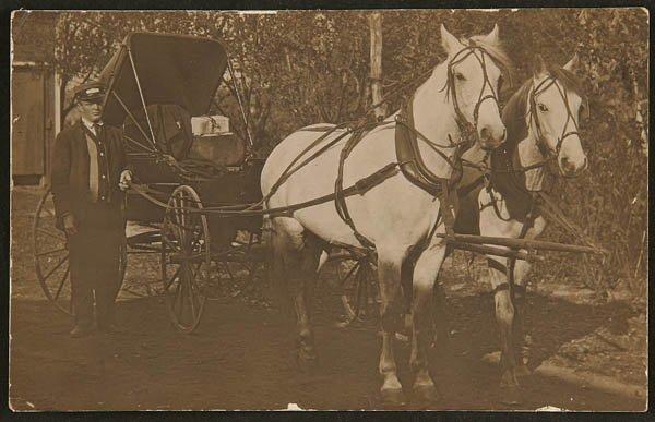 1503: A REAL PHOTO POSTCARD, R.F.D. Buggy postman