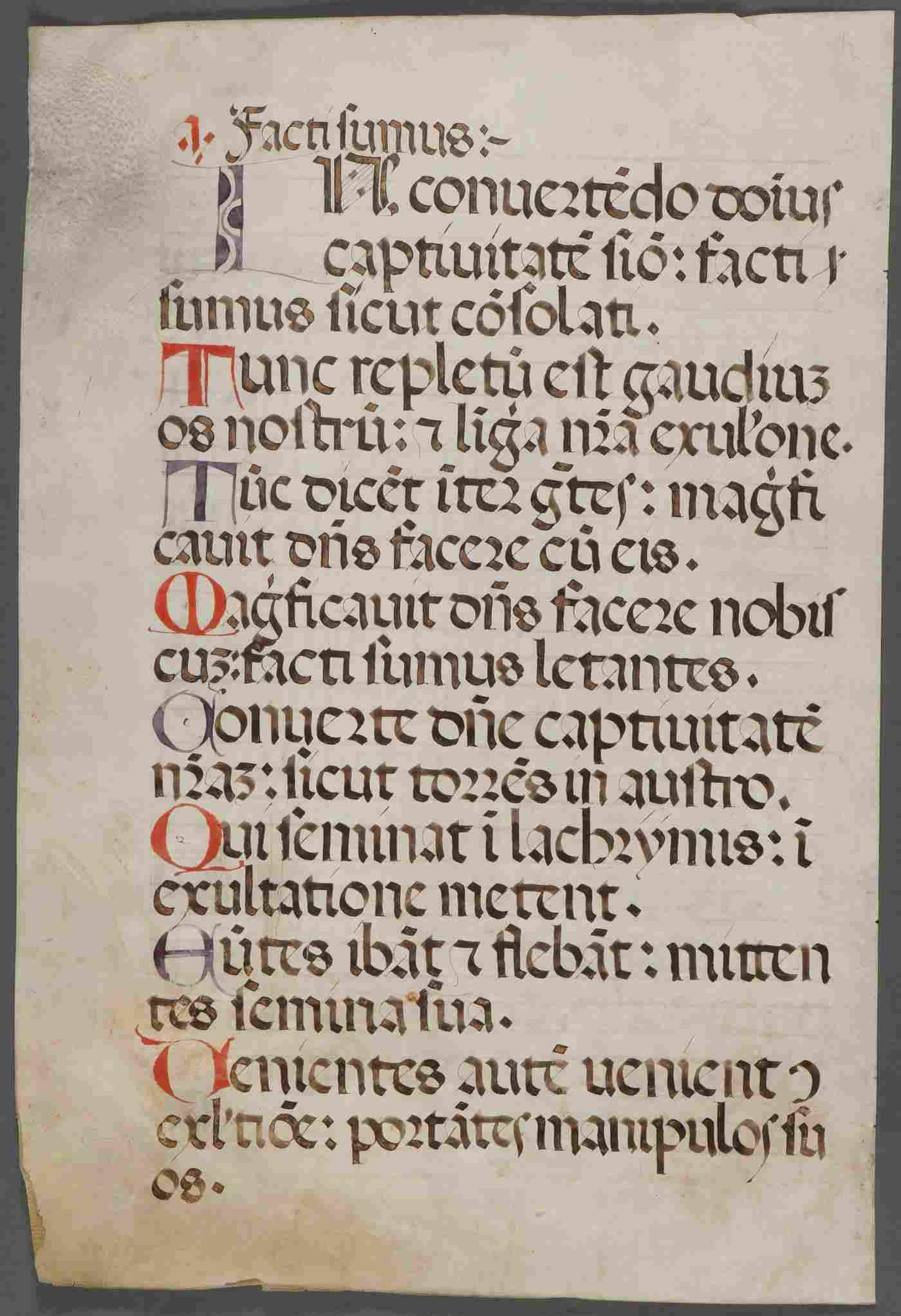 7 MEDIEVAL ILLUMINATED LEAVES C 1500-1650