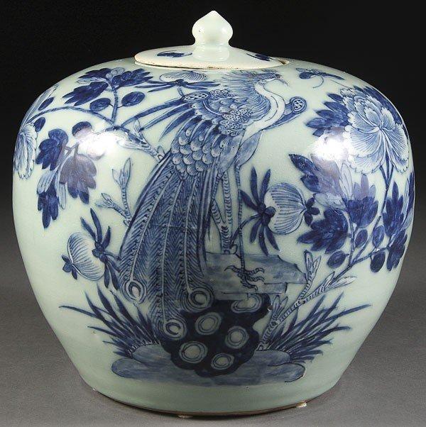60: A CHINESE PORCELAIN BLUE & WHITE  JAR