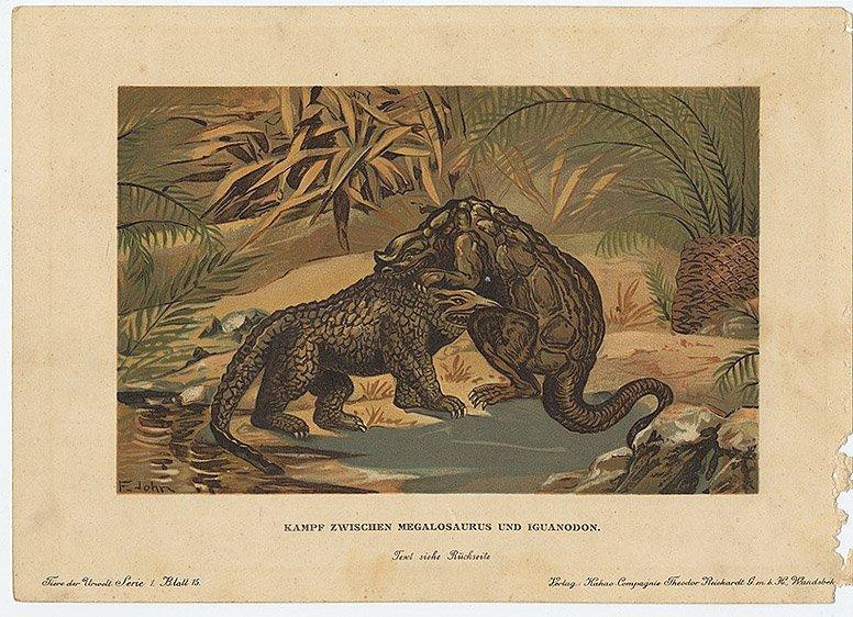 MEGALOSAURUS AND IGUANADON Dinosaur Natural history