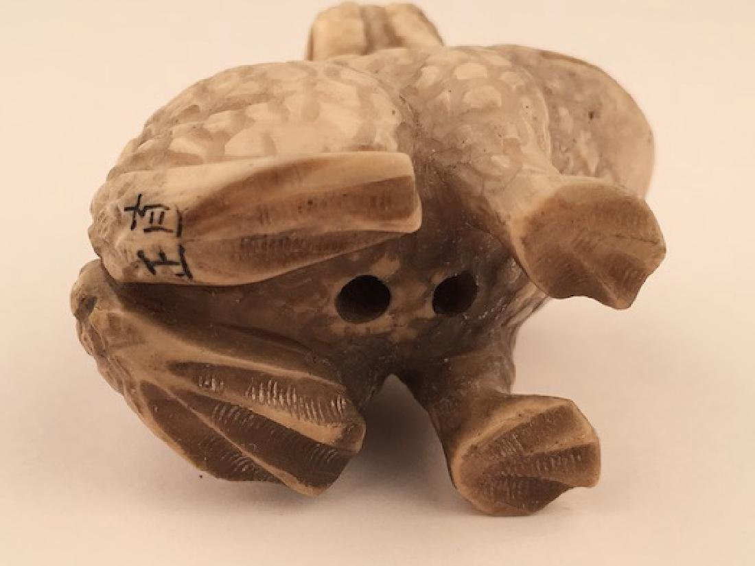 Antique carved Netsuke figure of a small frog on the - 5