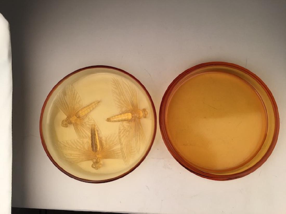 "R. Lalique ""Libellules"" powder box in an golden amber - 5"