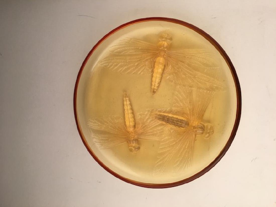 "R. Lalique ""Libellules"" powder box in an golden amber - 6"