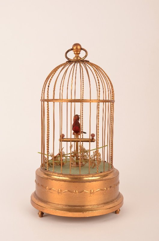 Singing bird within a cage, this small red bird sings