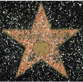 419: Hollywood Walk of Fame Plaque