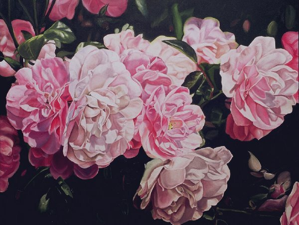408: Study in Pink, By Jeannine Swartz