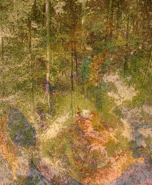 1024: Digital Print Fall Forest Tree Green Cramer
