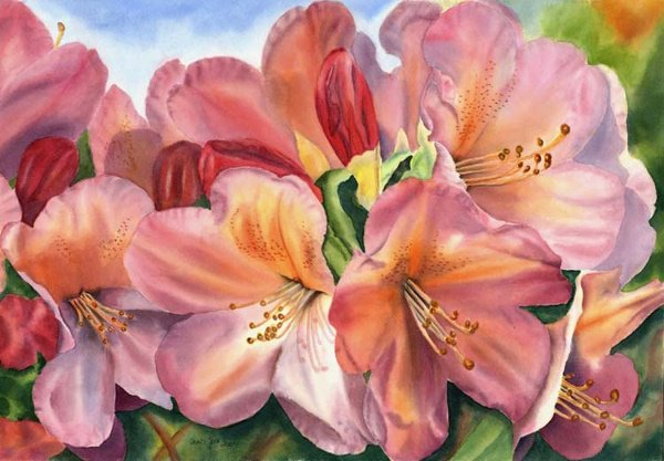 2006: Watercolor Painting Flower Pink by Joa