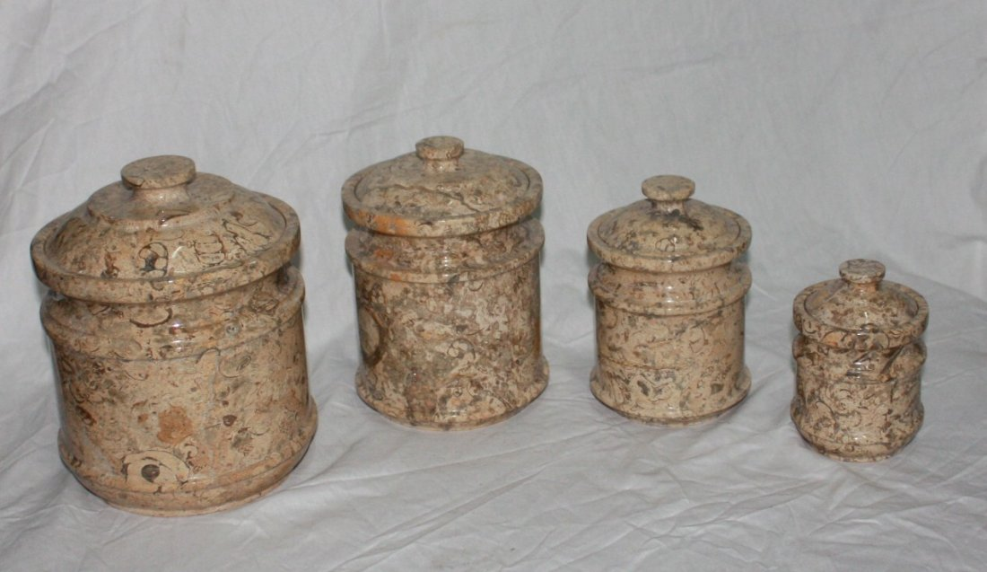 Set of 4 fossil Canasters
