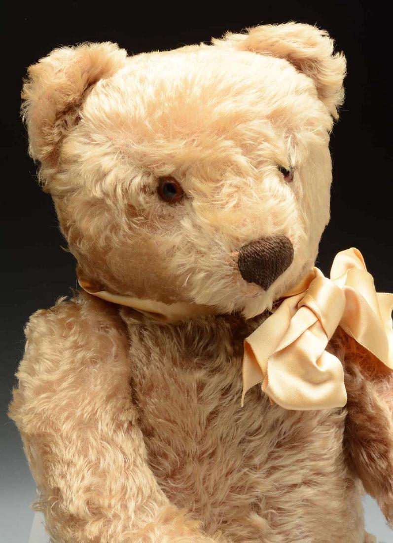 1950's Steiff Mohair Bear. - 2