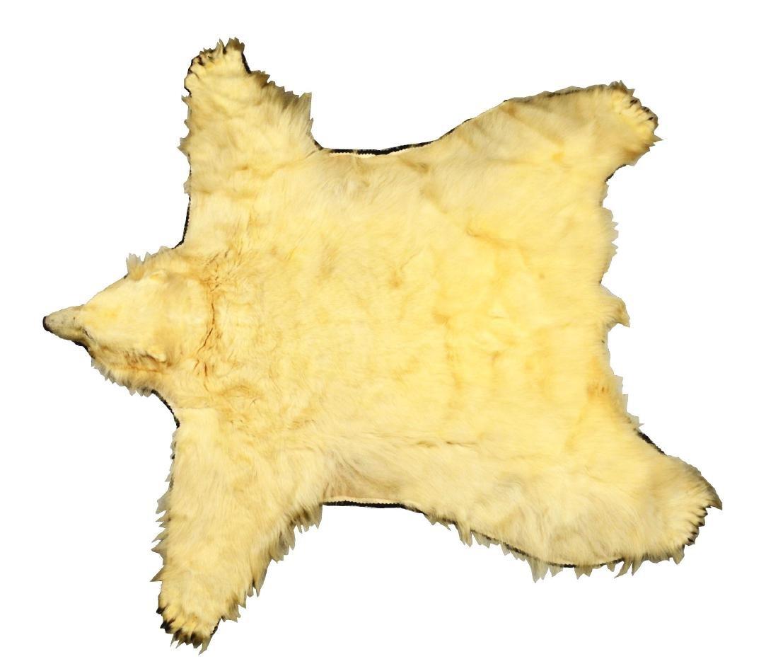 Full Size Polar Bear Skin Rug.