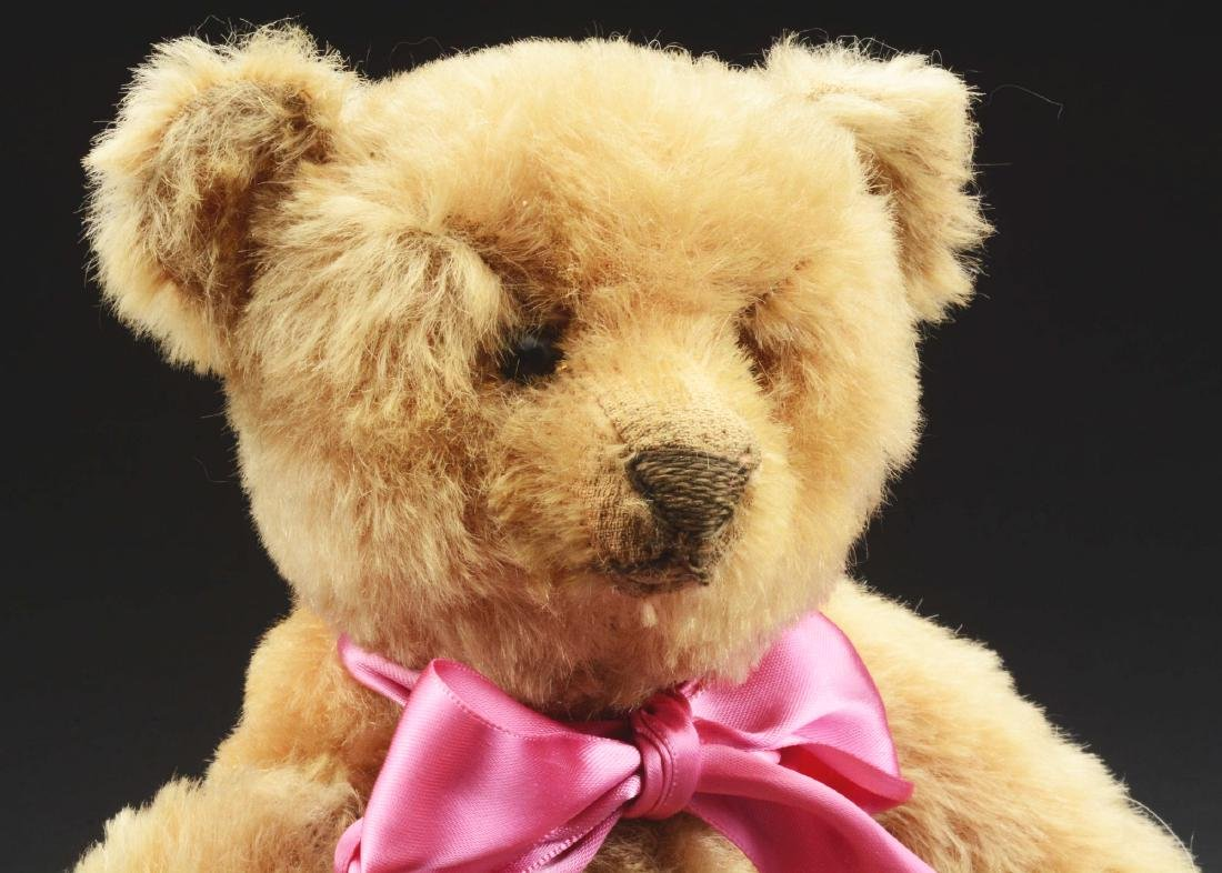 """1907 12"""" Early Steiff Bear. - 3"""