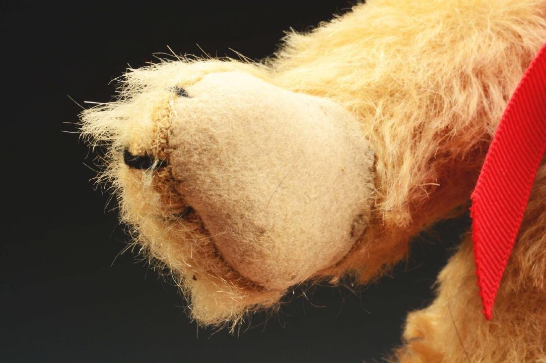 Early American Bear. - 6