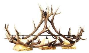 PHENOMINAL ANTLER POOL TABLE LIGHT.