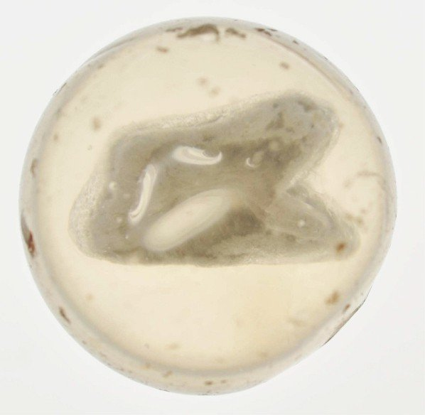 504: Small Animal Sulphide Marble.