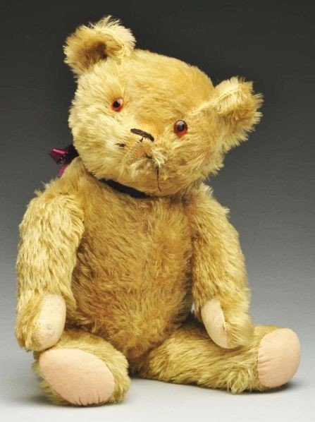 18: 1920s American Bear with Glass Eyes.