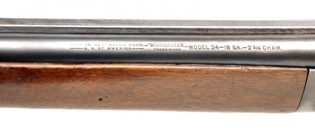 **Winchester Model 24 16 Ga. SxS Shotgun. - 4
