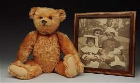 Steiff Apricot Color Teddy Bear.