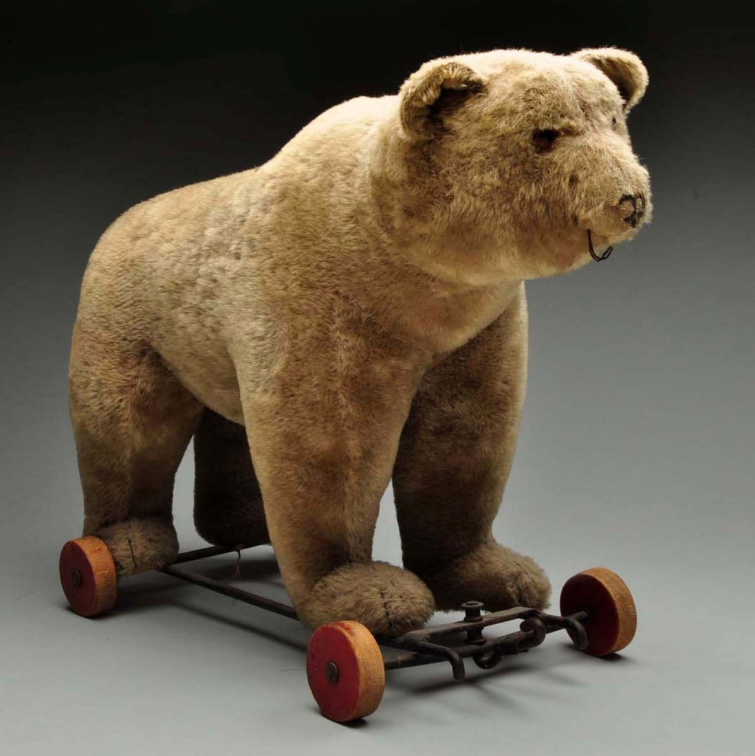 Large Steiff Bear On Wheels.