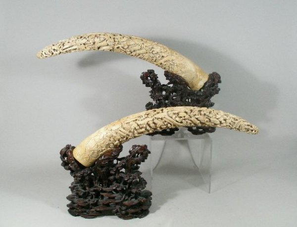 130: Pair of Large Carved Horns, Chinese, Probably 19th