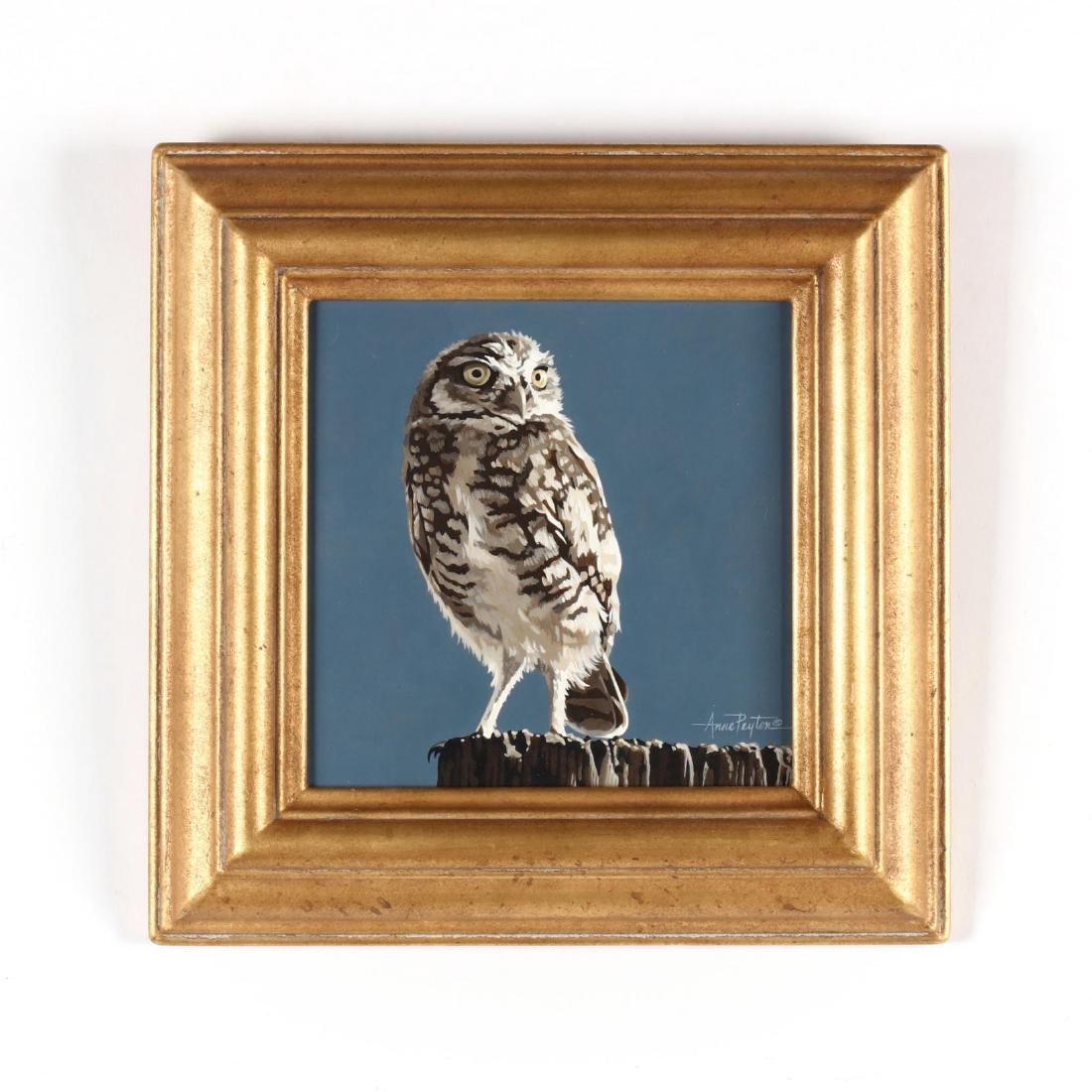 Anne Peyton (AZ),  Burrowing Owl
