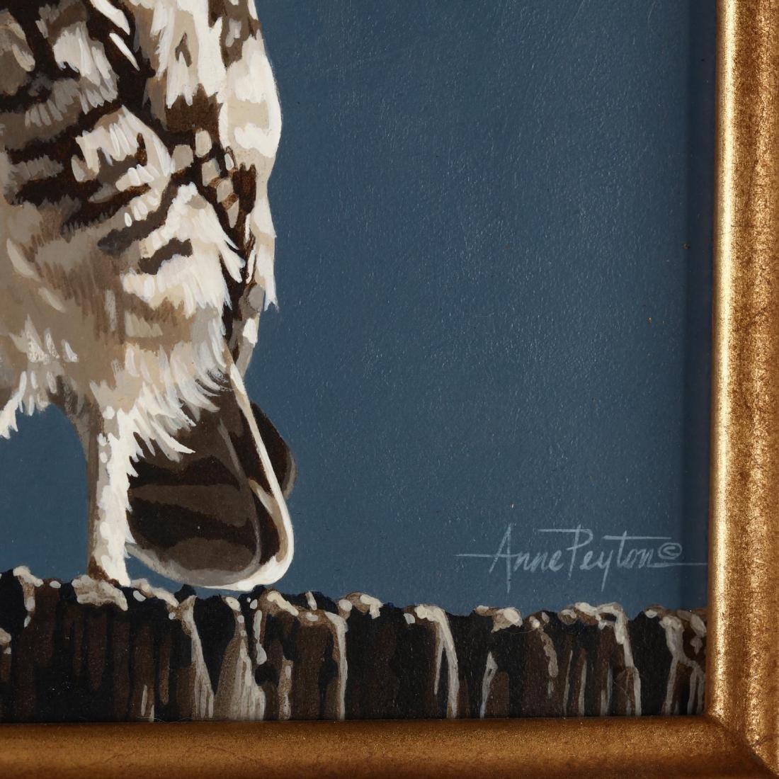 Anne Peyton (AZ),  Burrowing Owl - 2
