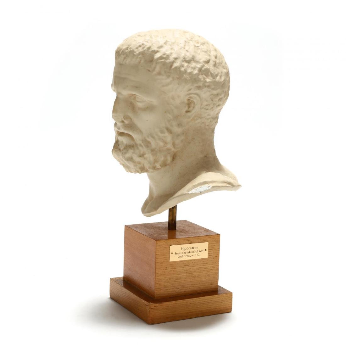 Contemporary Large Plaster Bust of Hippocrates - 2