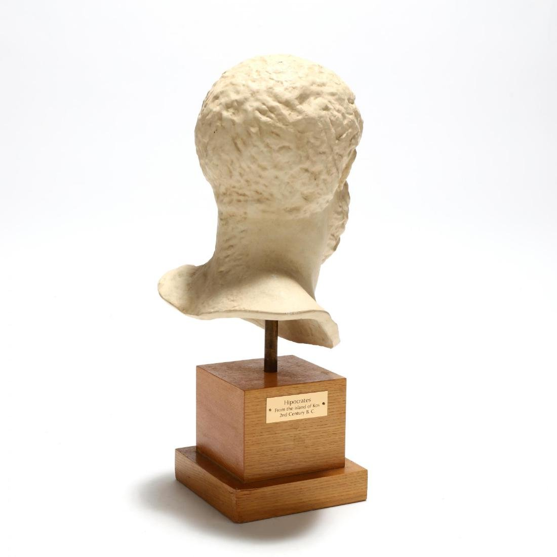 Contemporary Large Plaster Bust of Hippocrates - 3