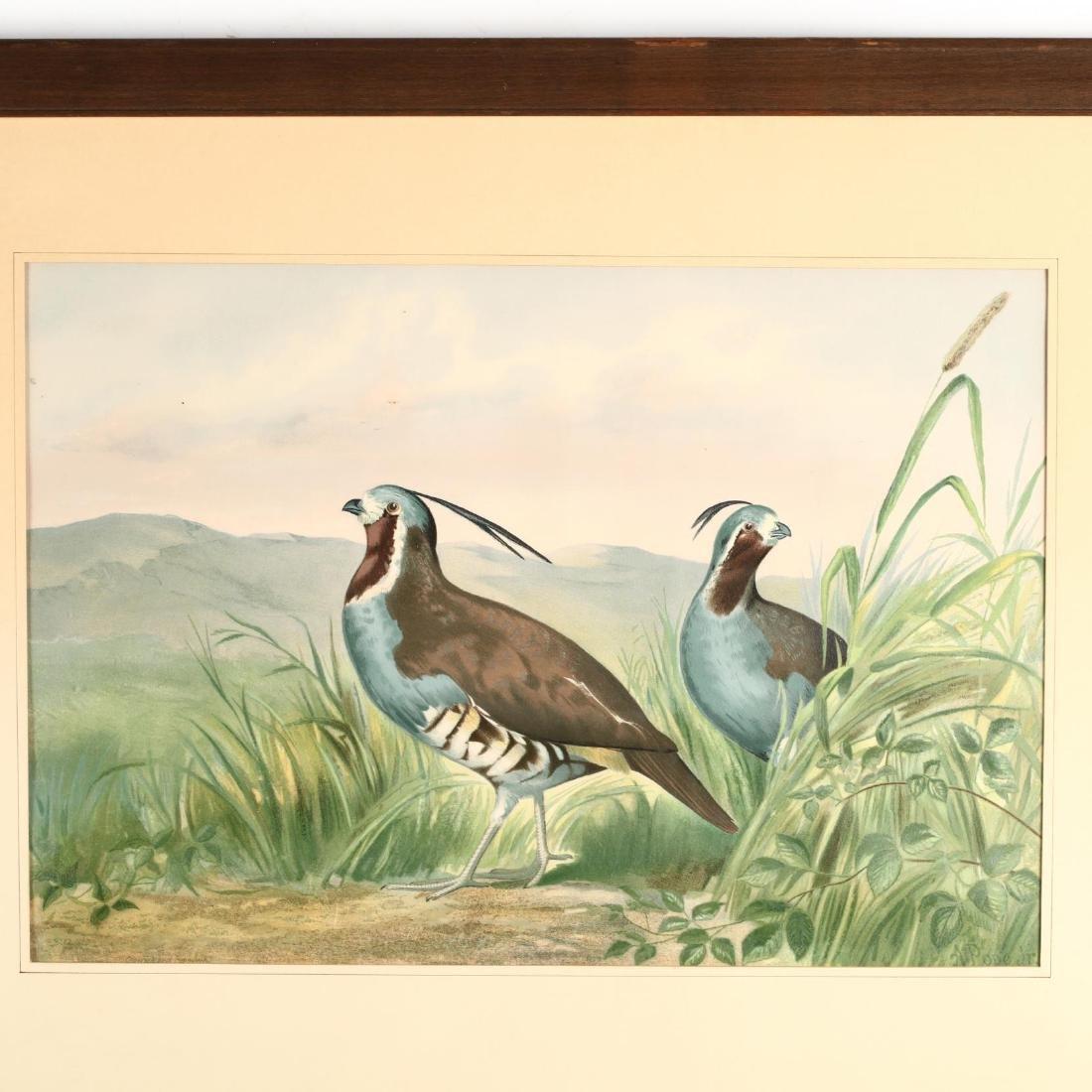 Alexander Pope Jr. (American, 1849-1924), Four Works - 3