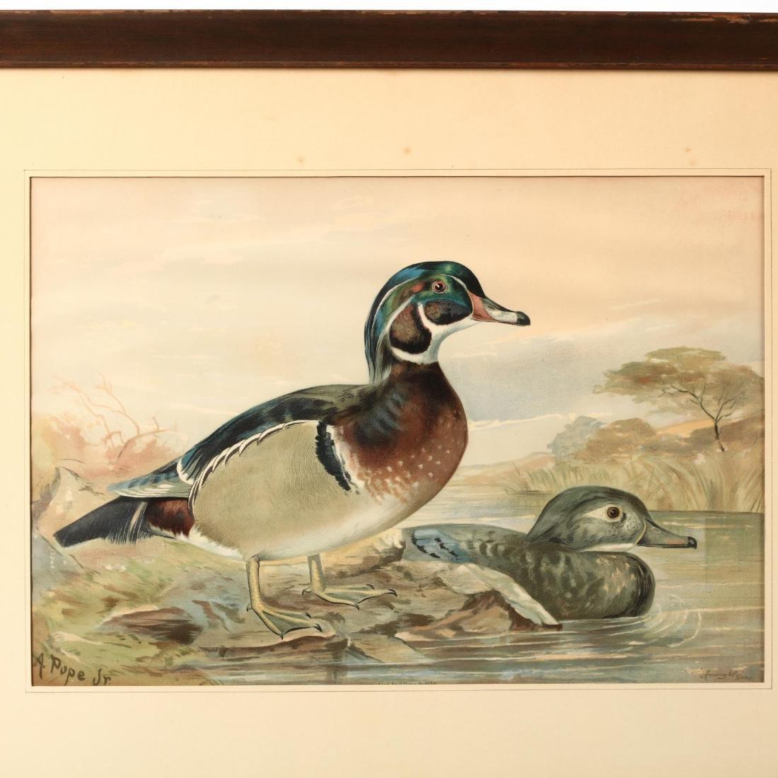 Alexander Pope Jr. (American, 1849-1924), Four Works - 5
