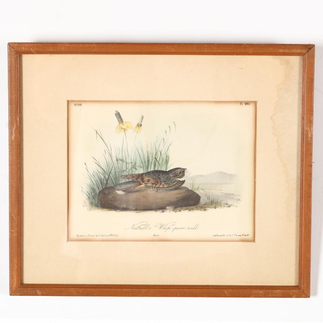 after John James Audubon (Am., 1785-1851), Six Prints - 2