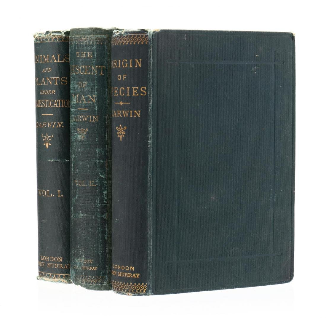 Three 19th Century Books by Charles Darwin - 2