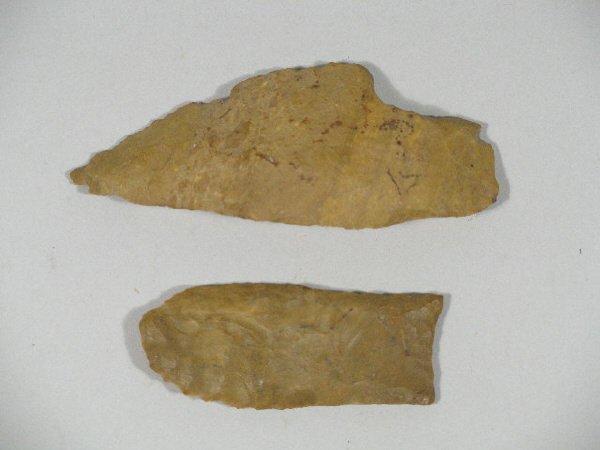1: Paleo Indian Knife and Clovis Point,