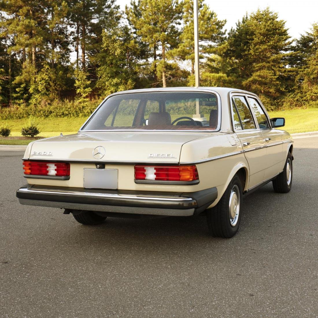 One-Owner 1981 Mercedes Benz 240D - 5