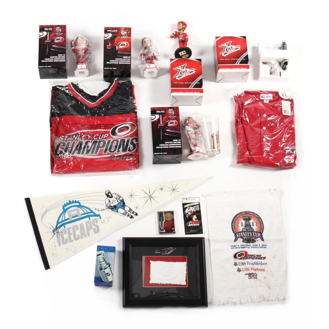 Carolina Hurricanes Collection