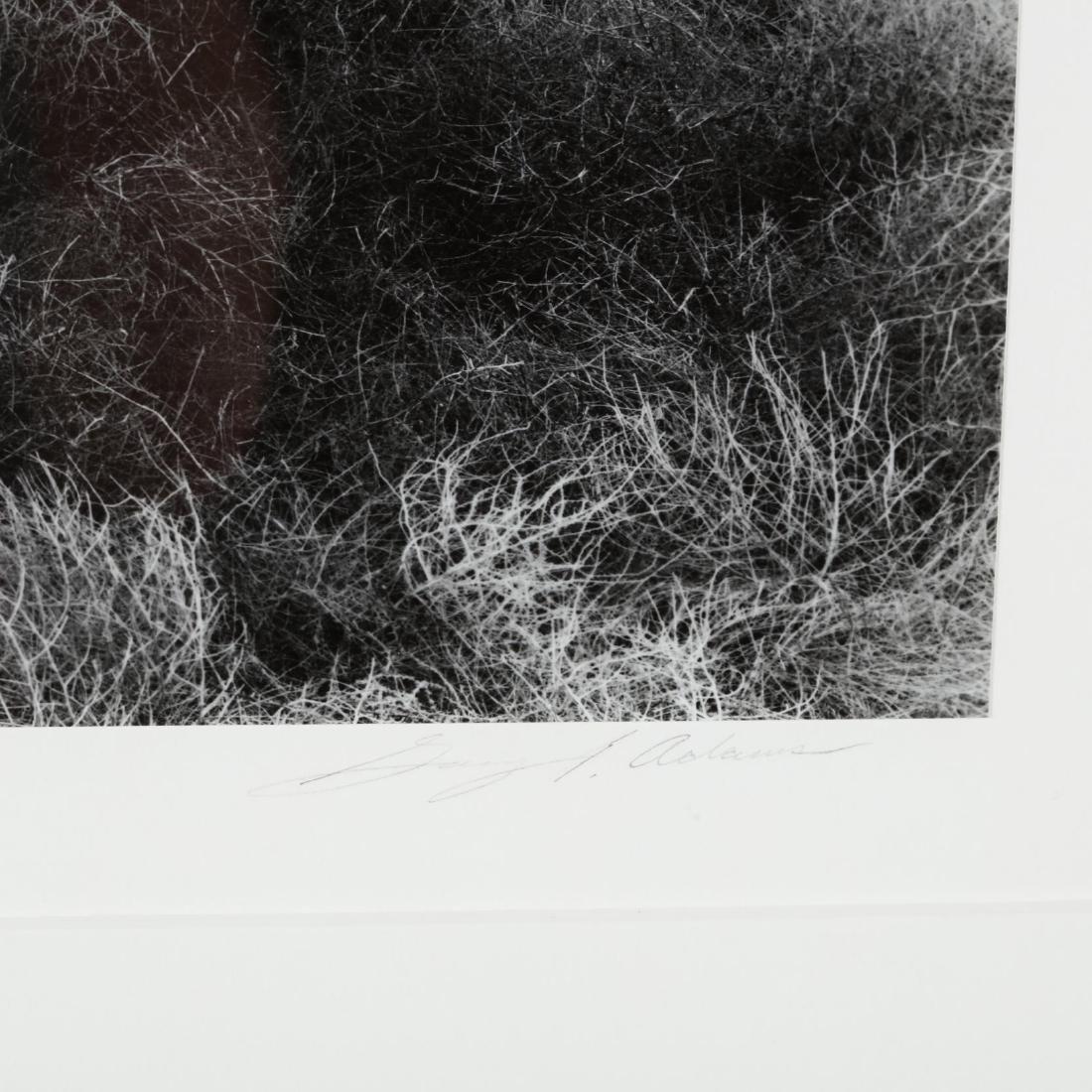 Gary Adams (CA/NV, 20th/21st Century), Sheep Mountain - 2